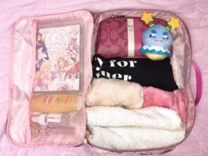 チェスティのマルチトラベルバッグに荷物を入れた写真